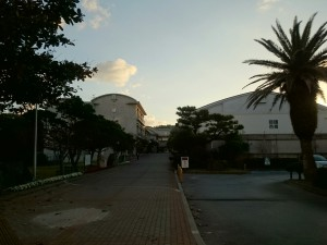 okinawa13