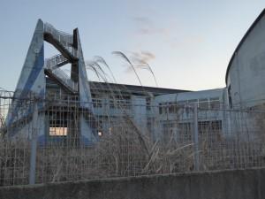 fukushima23